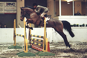 1988 - Towerlands 4yr old Champion